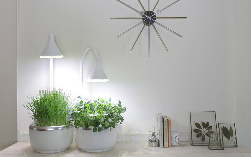 Countertop Hydroponics : SproutsIO Countertop Hydroponic Garden InsideHook